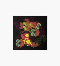 Zebrafish Fluorescent Staining Art Board Print