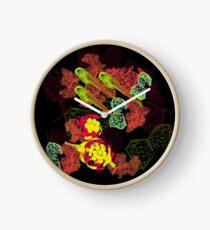 Zebrafish Fluorescent Staining Clock