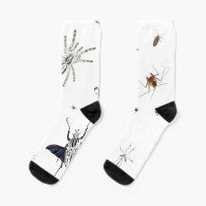 Entomologist's Dream Socks