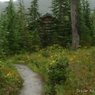 01 january - Taylor Meadows Hut by Michael Garson