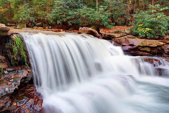 Rushing Waters of Deckers Creek by Gene Walls