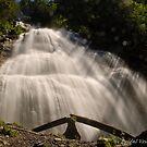 03 March - Bridal Veil Falls by Michael Garson