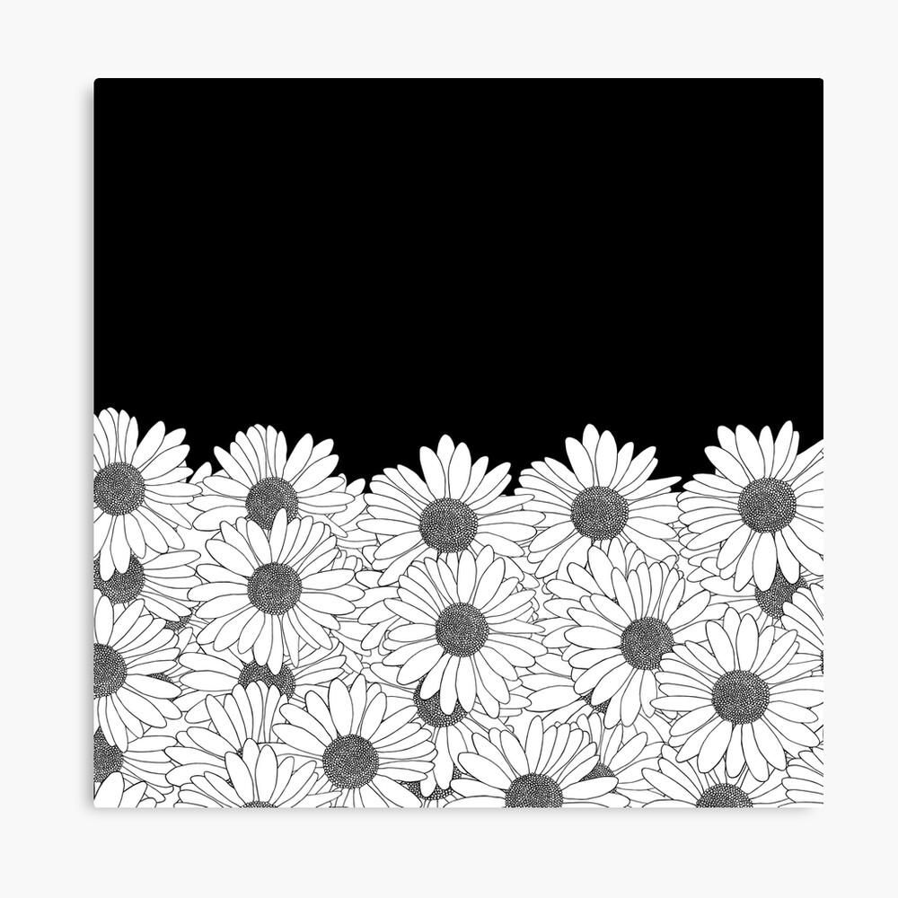 Daisy Boarder Canvas Print