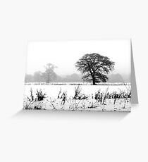 Cold December - 2010 Greeting Card
