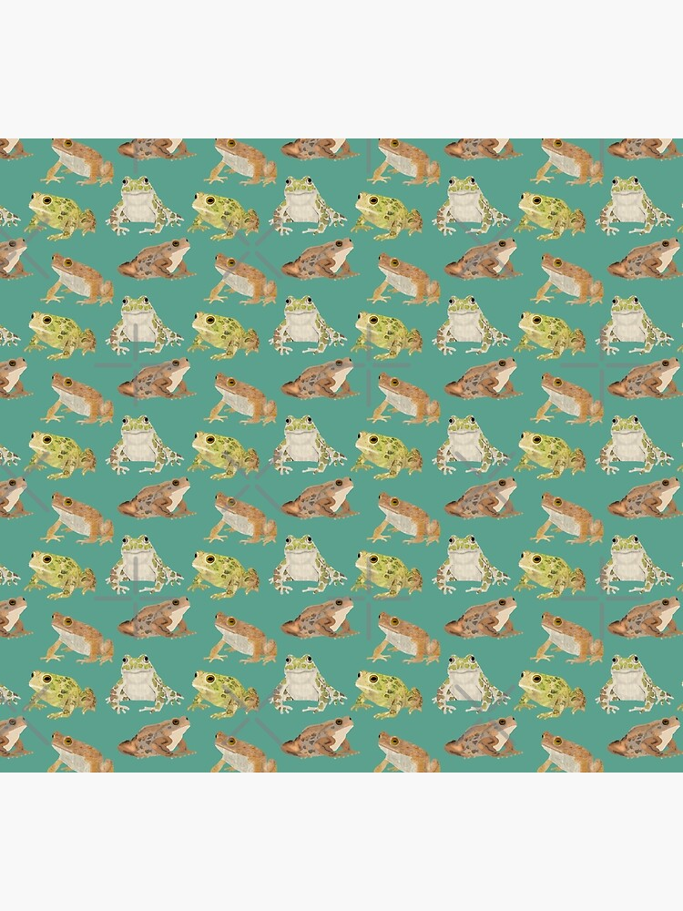 Toads by amymh