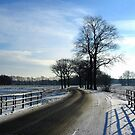 Country Road with Snow by ienemien