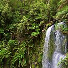 Beauchamp Falls by primovista