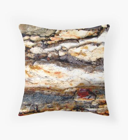 A Cloudy Day Throw Pillow