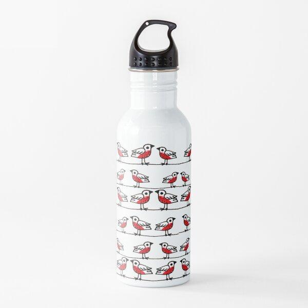 Little Birds Water Bottle
