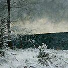 Winter Ice by Ann Garrett