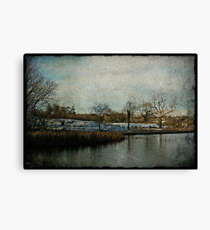 Vintage Winter in Ireland Canvas Print