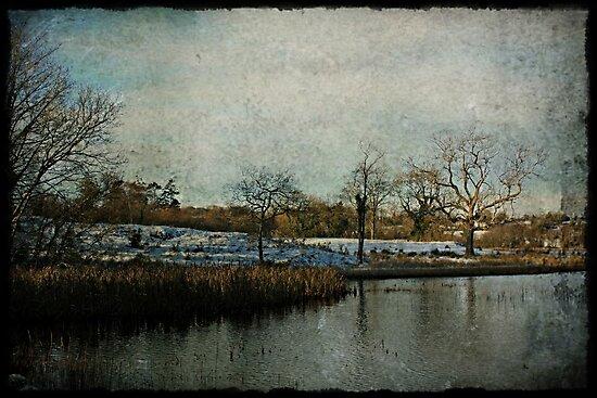 Vintage Winter in Ireland by Julesrules