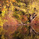 Autumn sunset at the lake. by Edward Mahala