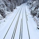 No Trains Today! by inglesina