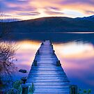 Lake Hayes Jetty by Adrian Alford Photography