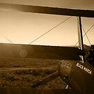 Sopwith Triplane by 3dHistory