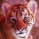 I've Got a Tiger by the Tail! by Lisa Baumeler