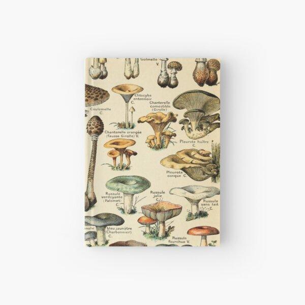 Mushrooms Hardcover Journal