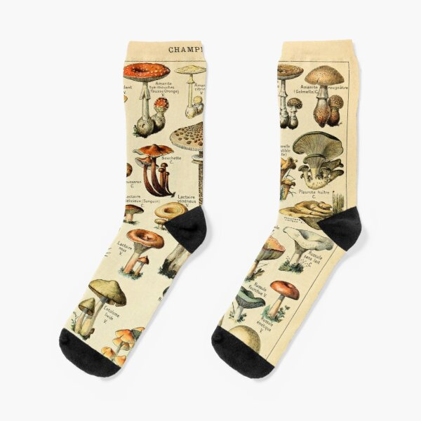 Mushrooms Socks
