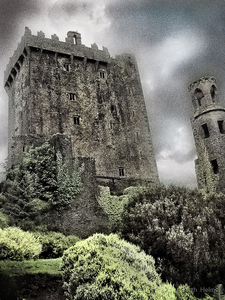 Blarney Castle, Second View by Garth  Helms