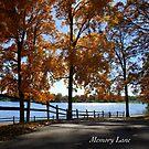 Memory Lane by JpPhotos