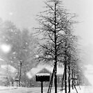 a snowy day in the South by piwaki