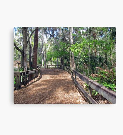 The Pretty Path Canvas Print