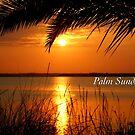 Palm Sunday by JpPhotos