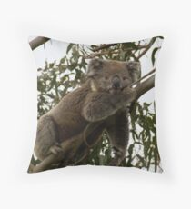 Hangin' with the Koala's - Great Ocean Walk, Cape Otway Throw Pillow