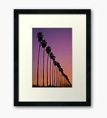 Redlands Palm Sunset Framed Print