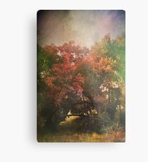 Please Let There Be Magic On The Other Side Metal Print