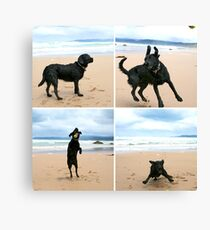 Omar at Apollo Bay Canvas Print