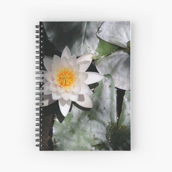 The OM of Water Lillies Spiral Notebook