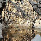 Ice Stream by skaranec1981