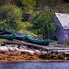 On the Bank of Northwest Cove by kenmo