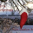 Merry Christmas from Swallow Rock by Annabelle Evelyn