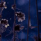 Flowers in the dark by finnarct