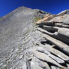 Mineral ridge, Oisans, France by Willy Vendeville