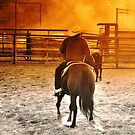 Vaquerro 4 Fort Worth Texas Stock Yards by jphall