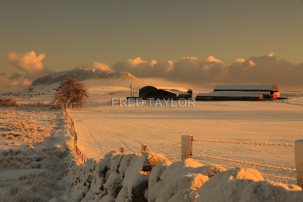Farm buildings at Slemish. by Fred Taylor