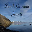 South Georgia Jewels by Rosie Appleton
