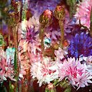 Secret Garden XI by Igor Shrayer