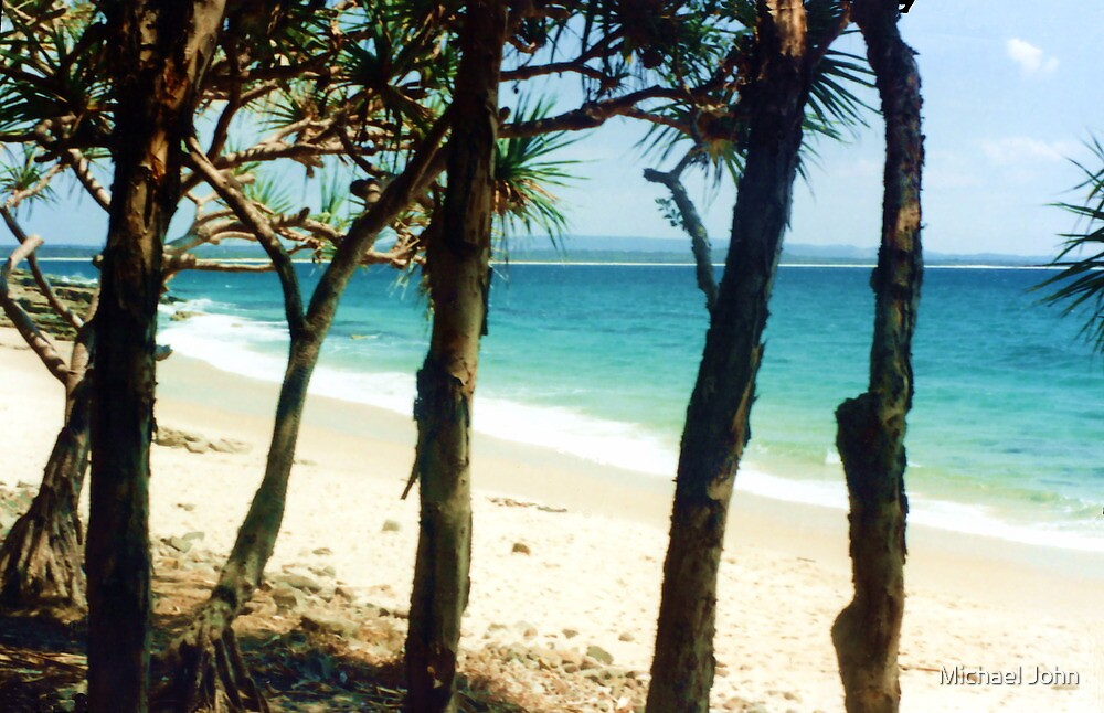Noosa Beach by Michael John