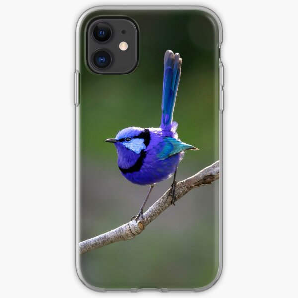 Bruce the Blue Wren in afternoon light iPhone Soft Case