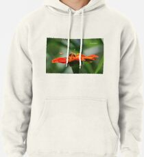 Bee Family Pullover Hoodie