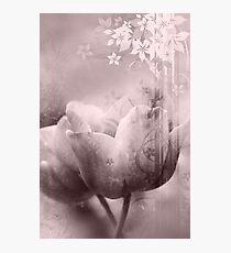 Fragility Photographic Print