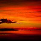Blaze by Ian Stevenson