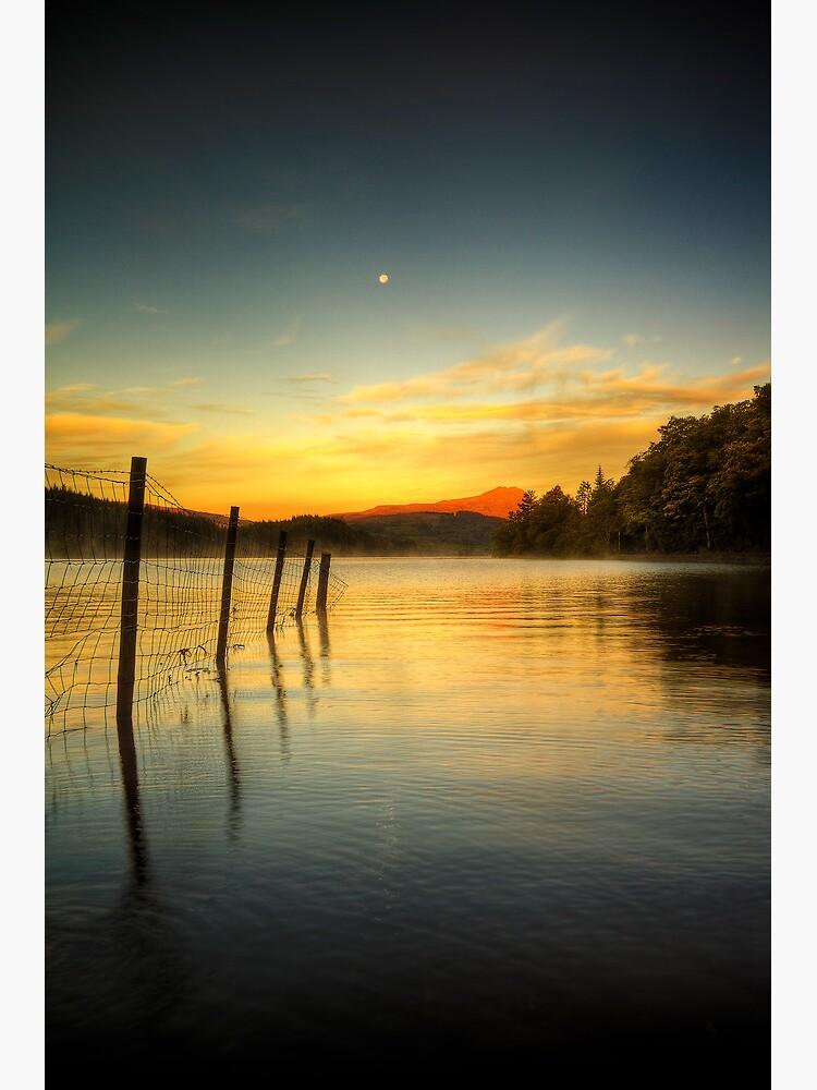 Ard Dawn (2) by Shuggie