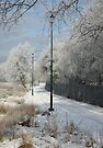 Lighting the Winter Way by John Keates