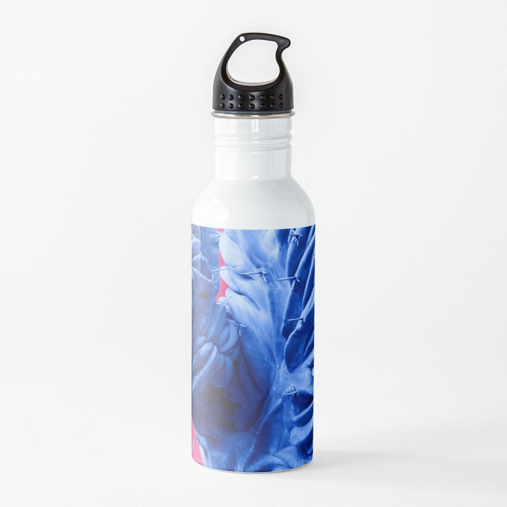 Funky Cactus Water Bottle